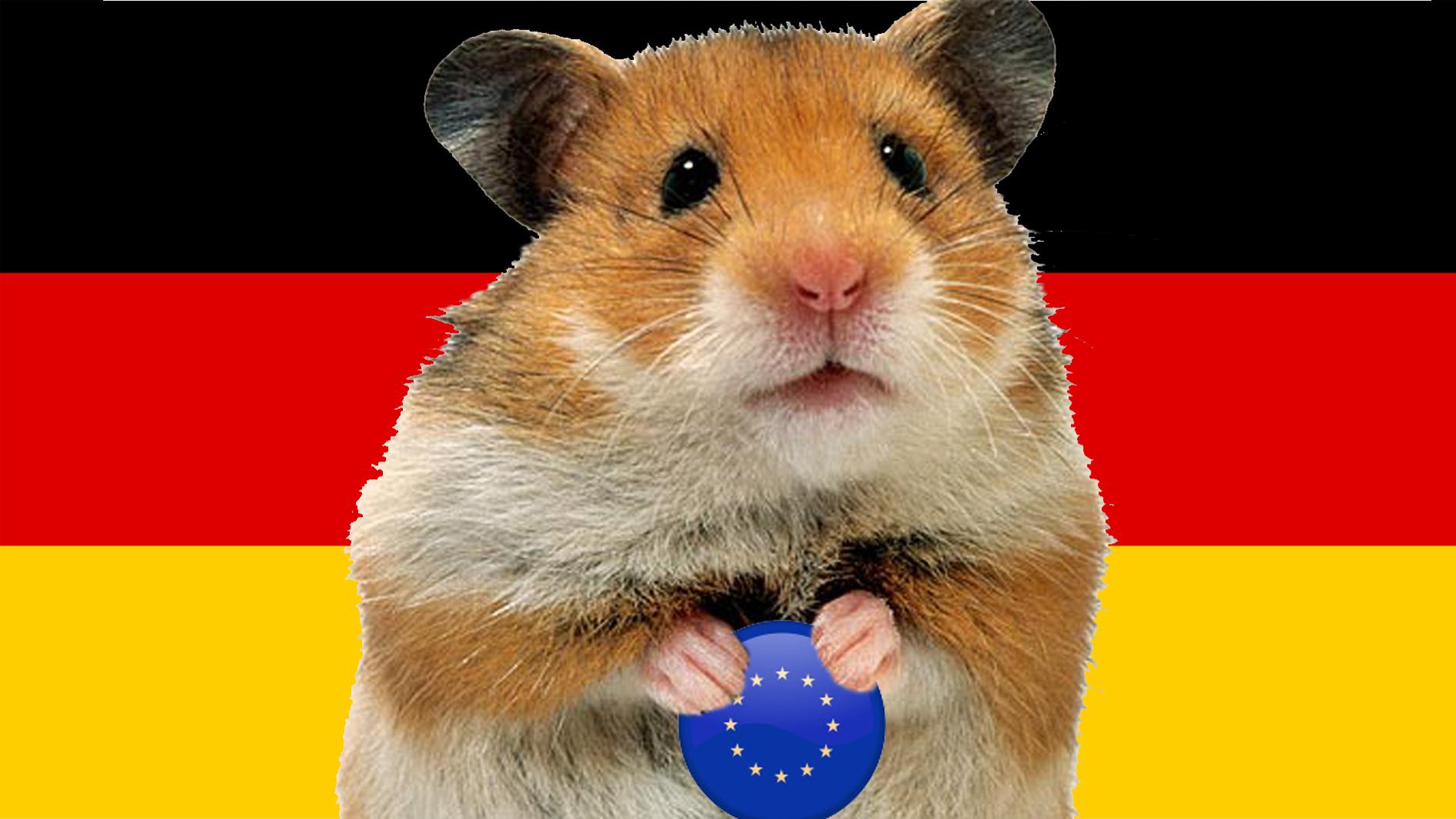 Deutschlandhamster